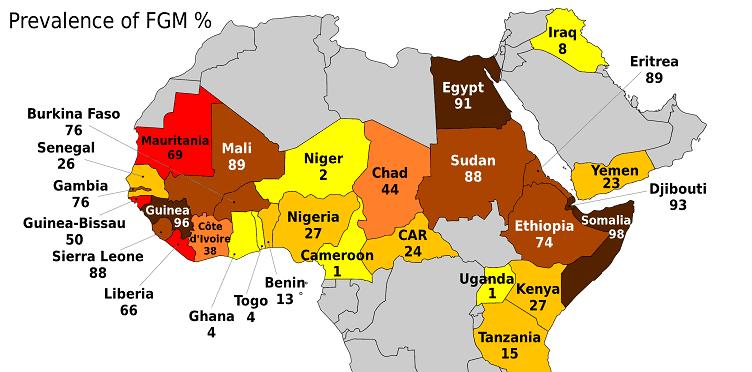 Combatting FGM in Burkina Faso